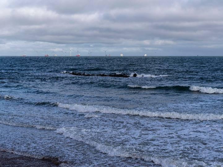 新聞分析|漁業為何成英歐談判棘手議題