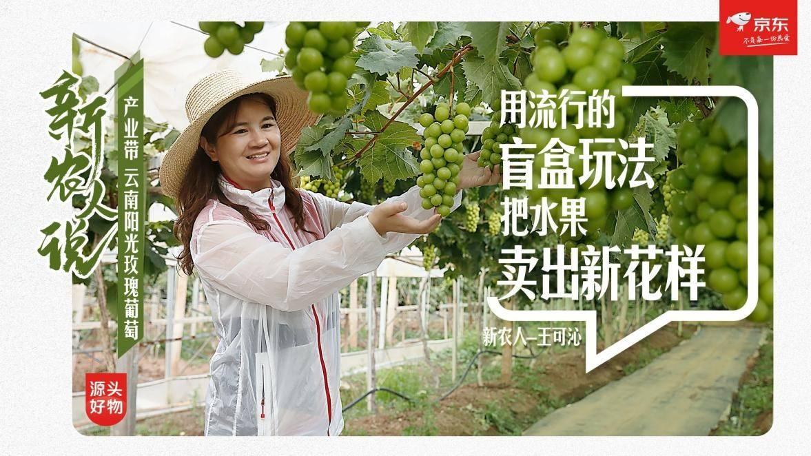 传媒人变身新农人 为云南果蔬打开品牌新视界