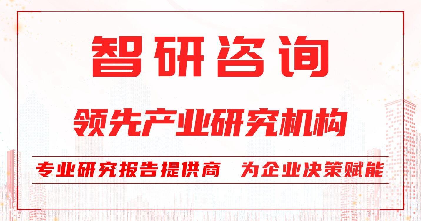 2022-2028年中国集成电路用电子化学品市场深度评估与投资战略研究报告