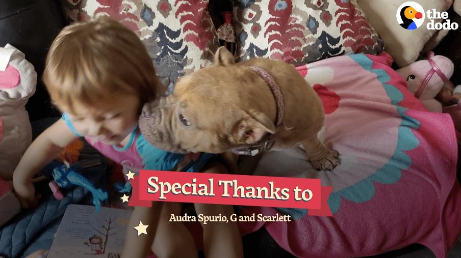 在被安乐死的前一秒,2岁萝莉说了一句话,彻底改变了她的命运