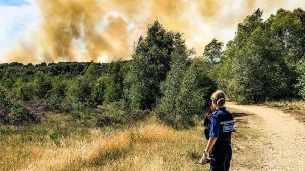 英国萨里大火蔓延40公顷100多户居民被疏散_中欧新闻_欧洲中文网