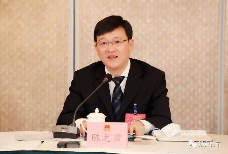 蔡书记陈市长参加代表团审议