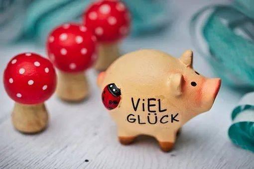 pig币猪币最新消息 PIG币下跌一天被跌去大半
