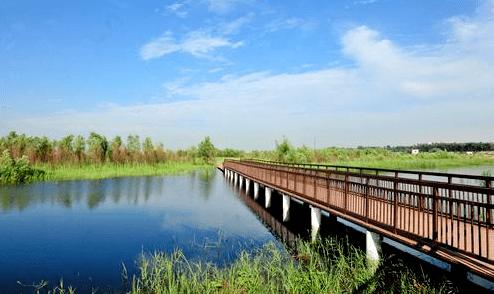 今天是第25个世界湿地日,关于郑州的湿地你了解多少?