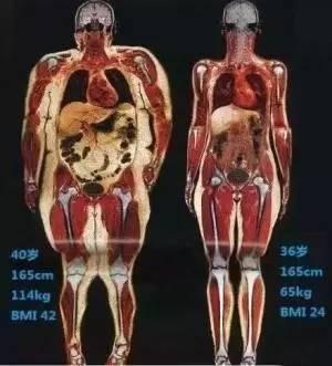 健身停练多久肌肉会消失?