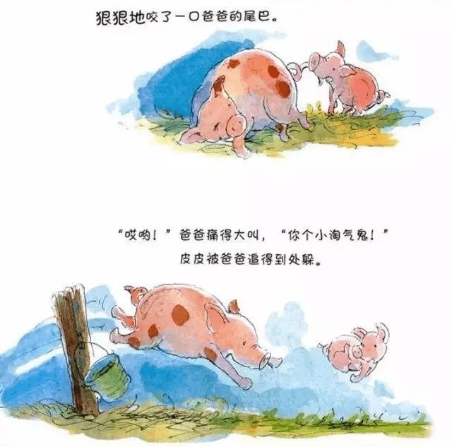 金宝晚安故事丨《皮皮猪和爸爸》最爱是亲人  第4张