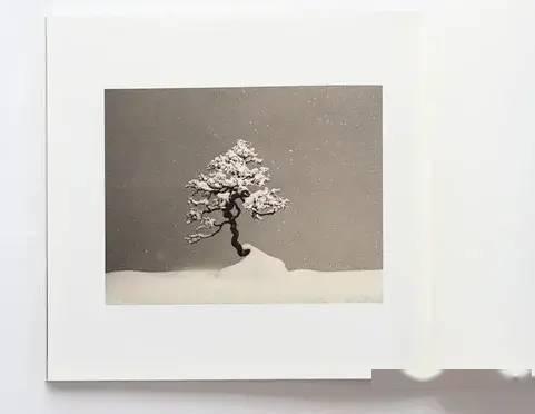 山本昌男《手中一滴》签名版