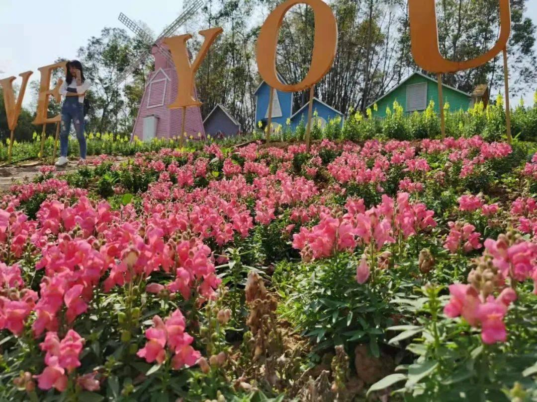 【开年游广西一一玉林之旅】接待游客228.2万人次!春节假期玉林旅游市场春暖花开!