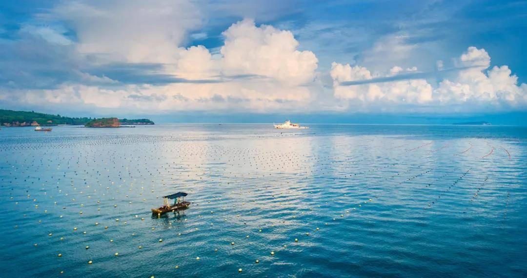 北海:在光影流动间传承南珠历史文化