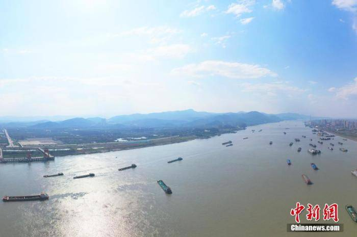 农业农村部:大力推动长江野生江鲜禁售禁食