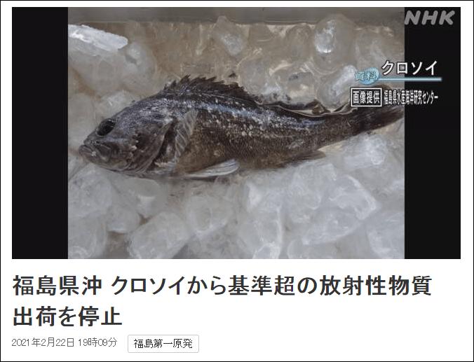 日本福岛海域又现放射性物质超标鱼,或曾进出核电站港