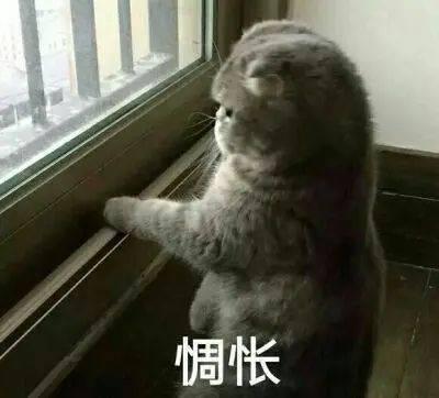 杭州拆迁户盼着搬新房,但一进小区就慌了:12个坟!