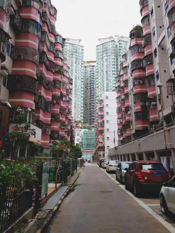 """深圳遥不可及的二手房价格:上面有""""指导价"""",衣柜和名画有""""成交价"""""""