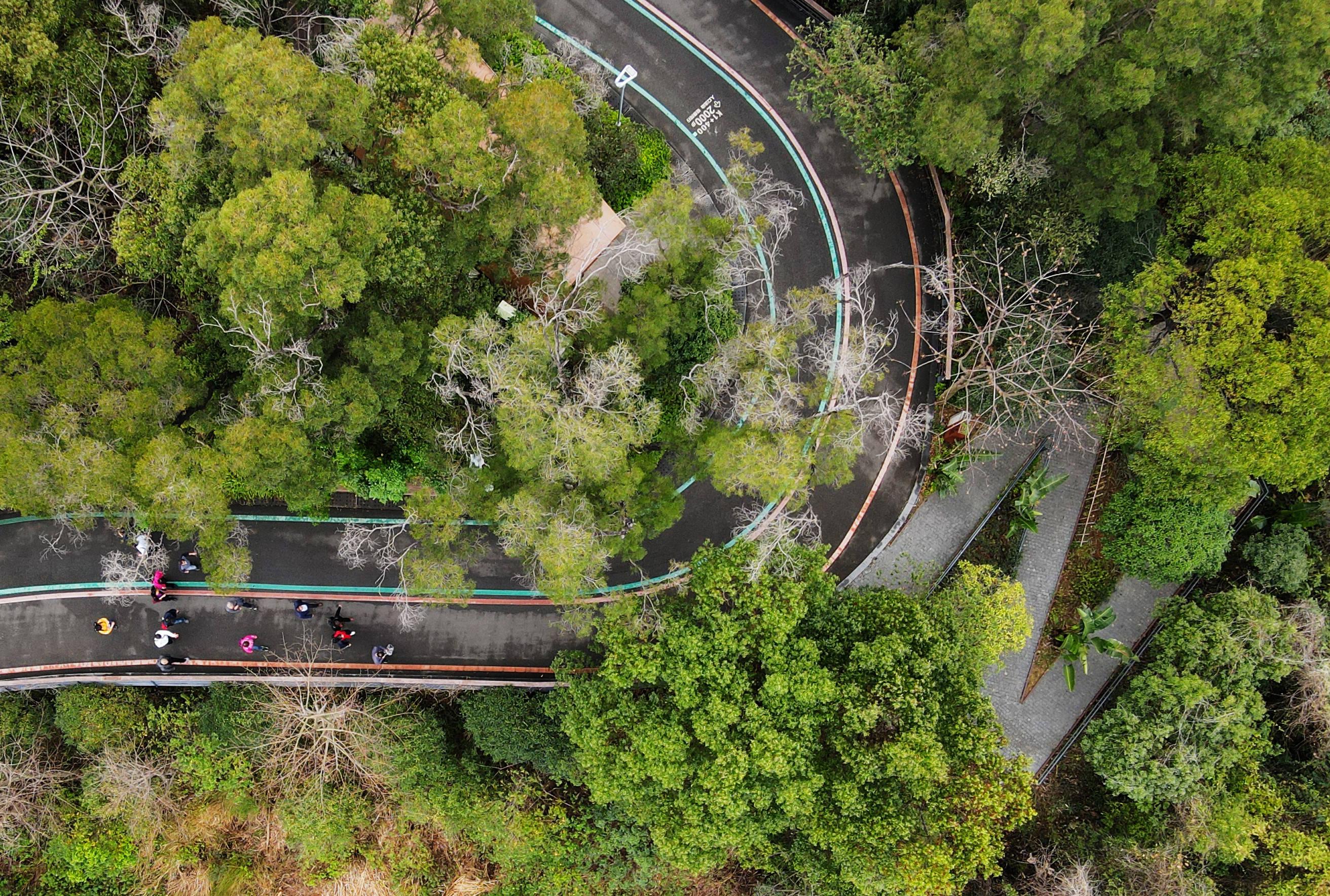 福州:条条绿道享美景