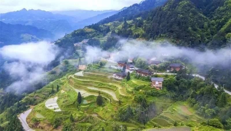 白云深处有人家!贵州这个贫困村,逆袭成了网红村
