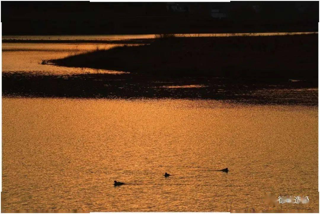 念湖,冬天再见了