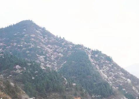 宁乡第一高峰瓦子寨出名了!