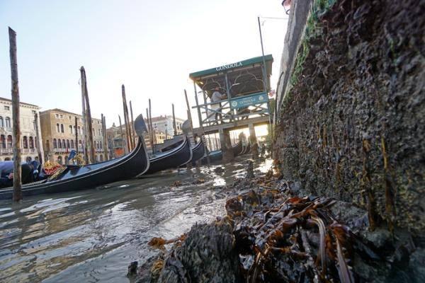 河道干涸、贡多拉船停摆,水城威尼斯的水去哪儿了?