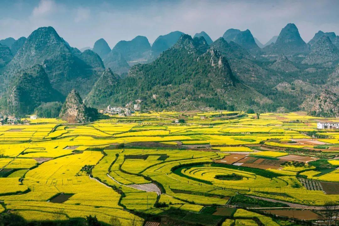 """中国最美""""油菜花海"""",万亩盛放,不输婺源!被央视点名,却鲜有人知"""