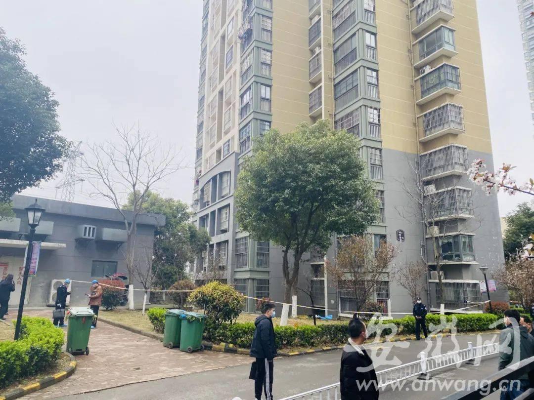 合肥母子三人清晨从24楼坠亡:女孩4岁男孩1岁,警方正调查
