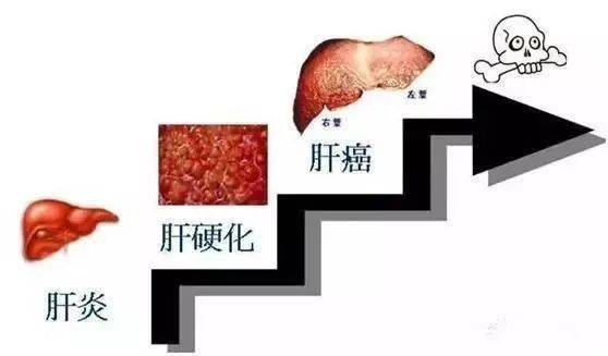 菲娱4平台总代-首页【1.1.9】