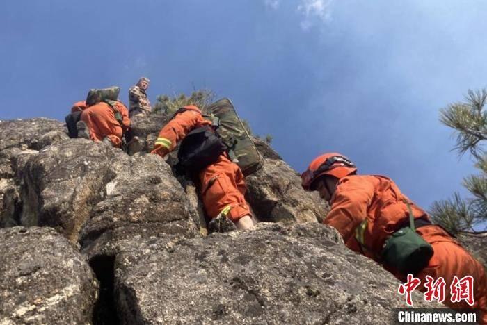 四川九龙县森林火灾:过火面积约183亩 扑救仍在进行