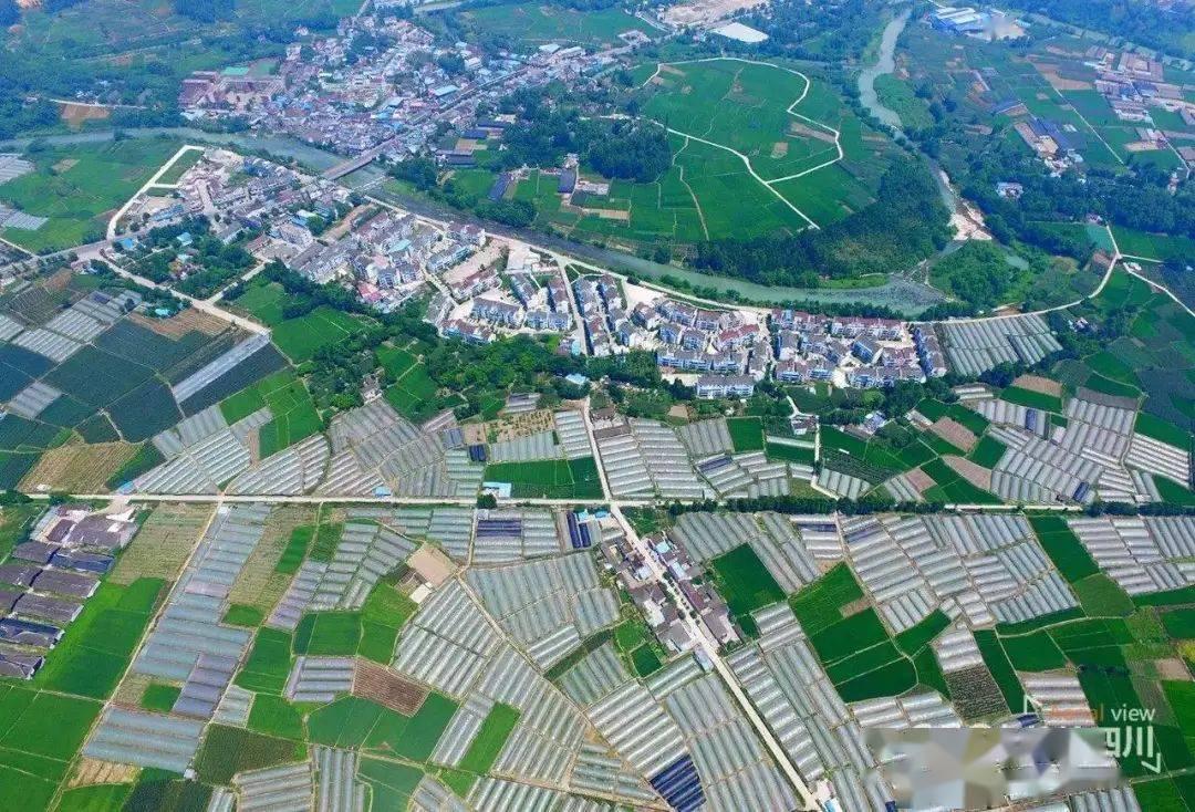 诸多利好!四川今年1292个合并村将开展集体经济融合发展试点