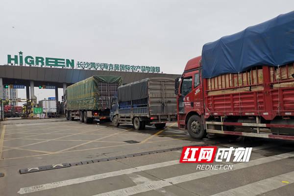 长沙黄兴海吉星蔬菜日均交易量突破1.5万吨 成全国最大枢纽市场