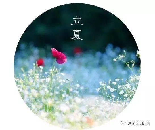 二十四节气之立夏丨连雨不知春去,一晴方觉夏来