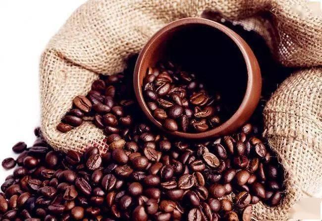 为什么高海拔产区咖啡豆风味更好?