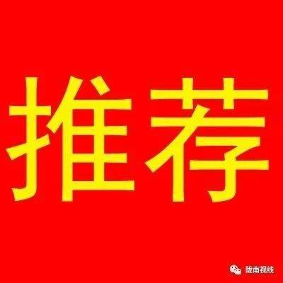 「推荐」知徽县,上视线!就下载城市通徽县视线APP(最新版本v6.90)