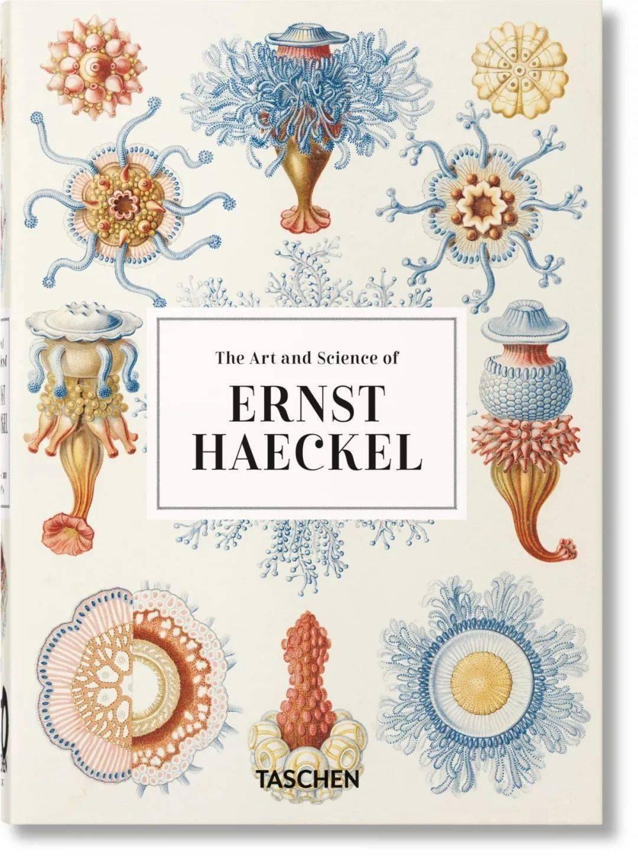 Ernst Haeckel | 从山巅至海底:大自然的艺术形态